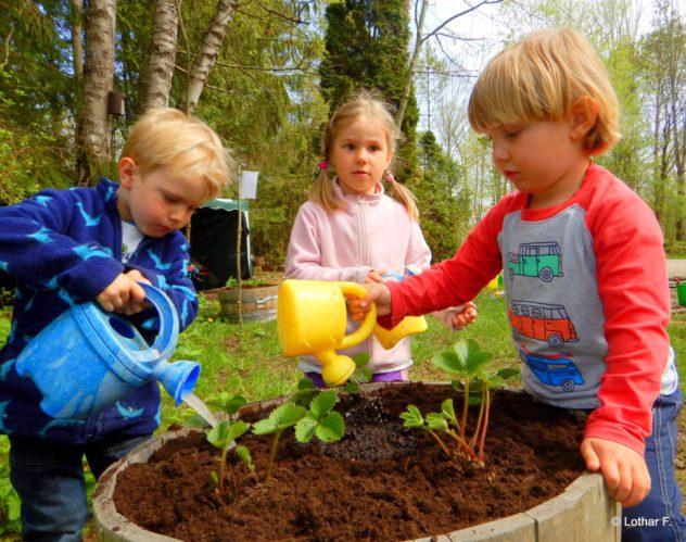 2016-04-22 Waldkinder Ismaning Erdbeeren 053 (Medium)